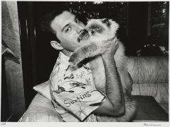 Freddie-Mercury-with-his-cat-Tiffany.jpg